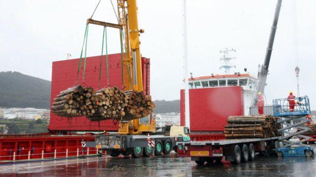 exportación de madera a china