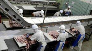 cargamento de carne contaminada