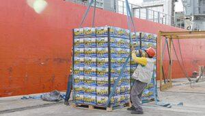 productos de exportación